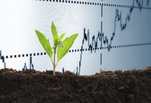 Socially Responsible Investing (SRI): A Primer